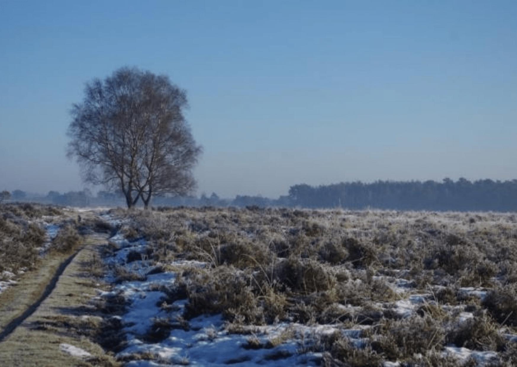 Tryas - Winterwandeling